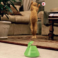 Bada-Beam Cat Toy