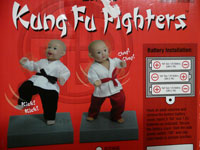 kung fu fighters