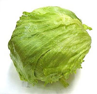safety lettuce